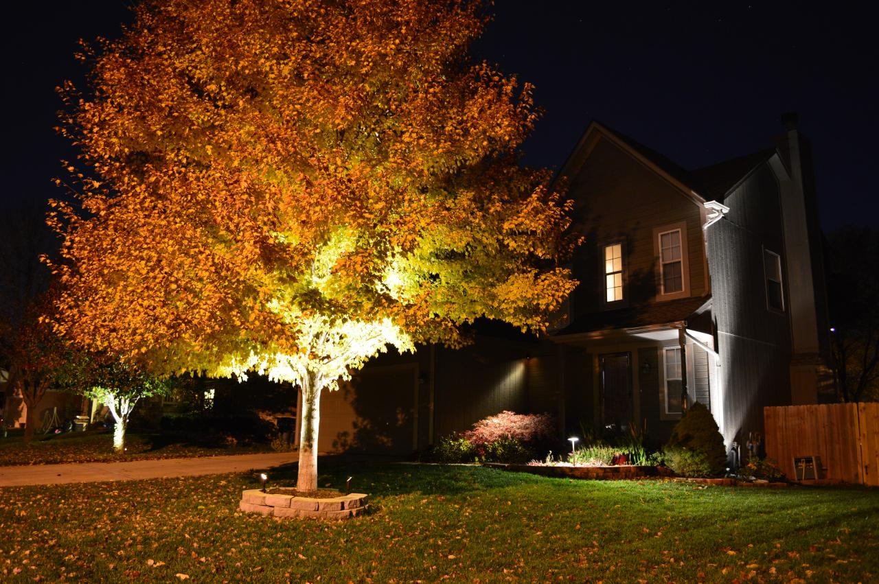 Green With Envy LLC - Professional Landscape Lighting