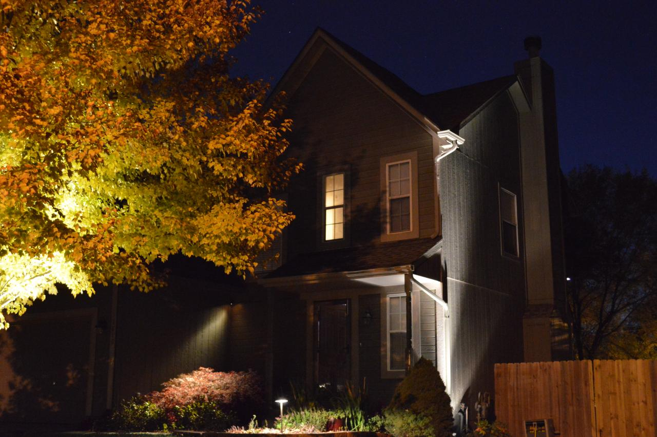 Professional Landscape Lighting - Green With Envy LLC - Professional Landscape Lighting